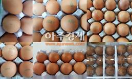 [살충제 계란 파동] 제2의 용가리 과자 사태 우려…정부 관리 소홀 비판 커져