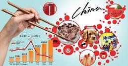 중국도 1코노미가 대세