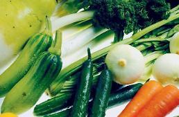 무71% 오징어17% 계란62% 亞 식품물가 급등에도 손 놓는 중앙銀