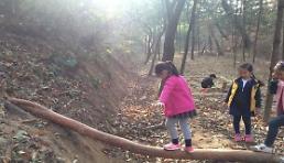 세종시, 원수산 파랑새유아숲체험원 인기