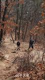 포천시 소흘읍, 천보산 등산로 낙엽 제거 및 환경 정비