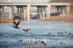 중국 조류독감 유행…여행객 감염 주의보