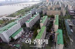 """[서울내 신규택지 개발] 전문가들 """"도심 대규모 공급이 관건"""""""