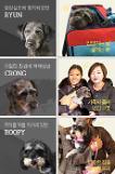 슬기로운 집사생활 5화, 검은 개를 입양하세요··· 케어, 블랙독 캠페인 part 2