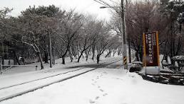 오늘 춘분인데 때아닌 대구·부산 눈…네티즌 3월에 실화냐