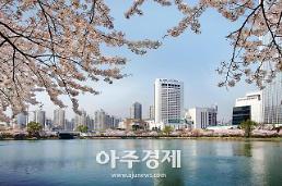 [기수정의 호텔in]벚꽃 명소는 나야 나...호텔가 벚꽃 마케팅 치열