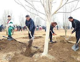 [중국포토] 나무 심는 시진핑