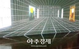 [전시 영상톡]안보면 평생후회 80년 한국미술 총정리..국립현대미술관 덕수궁관