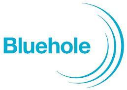 블루홀, 모바일게임 개발사 딜루젼스튜디오 인수 예정