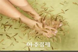 해수부, 제4회 한국관상어산업 박람회 개최