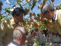 김광수 NH농협금융 회장 폭염 농가에 보험금 신속 지급