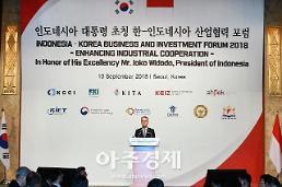 新남방 핵심국가 인도네시아와 제조업 등 경제협력 강화(종합)