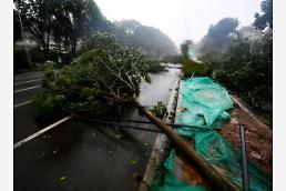 [중국포토] 필리핀 휩쓴 태풍 망쿳, 中 상륙...유리창 깨지고 가로수 휘청
