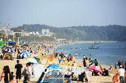 올 여름 대천해수욕장 방문객 958만1000명.. 전년 比 30% 감소