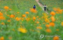 '추석연휴 시작' 날씨 맑음… 낮 최고 24~28도