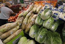 극심한 폭염에 채솟값 폭등… 9월 소비자물가 1년 만에 최대 상승