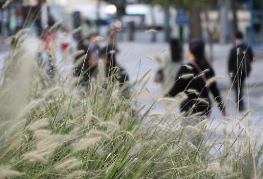 찬이슬 맺히는 한로 오늘날씨 쌀쌀… 강한 바람불어 체감온도 뚝