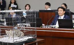 '결정적 한방' 없는 한국당…국감 곳곳 소모적 논란만