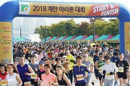 """""""우리 농가 힘내세요"""" 계란마라톤대회 2000명 참여"""