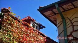中 칭다오 출근길 가을비…미세먼지 좋음