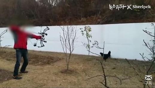 위디스크 양진호 회장, 일본도·석궁으로 산 닭 잡기 강요 동물단체에 고발당할듯