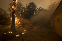 [영상] 美 캘리포니아 대형 산불, 사망자까지 발생…서울 면적 절반