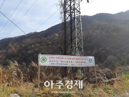 철도공단 소백산 송전철탑 철거해 생태환경 복원 나서