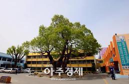 홍성군, 무심상-내일의 형상을 위한 춤, 이응노의 집에서...