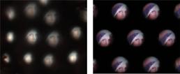 KAIST 연구팀, 곤충 눈 구조 모방한 초박형 카메라 개발