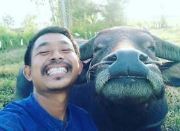 [포토] 물소와 농부의 셀카
