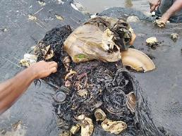 [포토] 이게 다 고래 뱃속에서 나온 쓰레기