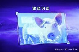 """얼굴인식기술 돼지에 적용 중국 """"농·축산업 디지털화 나선다"""""""