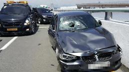 금고형이 도대체 뭐길래?…김해공항 BMW 운전자, 금고 2년 선고받아