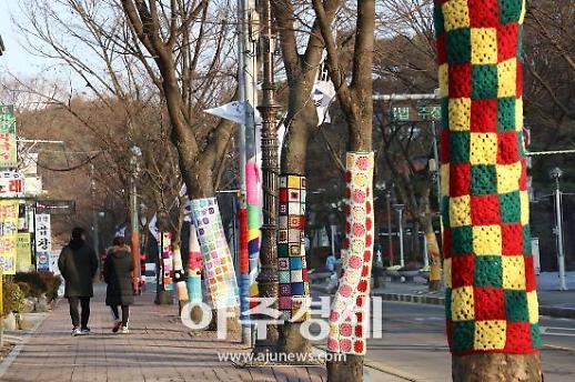 안양시 예술공원 오색 털실 가로수로 관광객 시선 모아