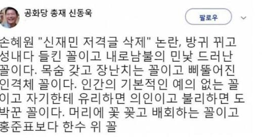 """'손혜원-신재민 논란' 신동욱 """"홍준표보다 더한 내로남불"""""""
