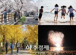보령시, 사계절 관광도시 보령, 올 한해도 풍성한 축제와 행사 가득!