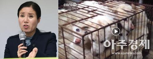 """""""도살 때문에 안락사""""…박소연 대표, 페이스북에 '개도살 동영상' 올려"""