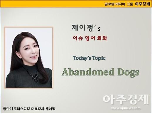 [제이정s 이슈 영어 회화] Abandoned Dogs(유기견)