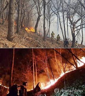 부산 기장 산불, 개좌산·삼각산 올해 2번…모두 건조특보 발효 중 발생