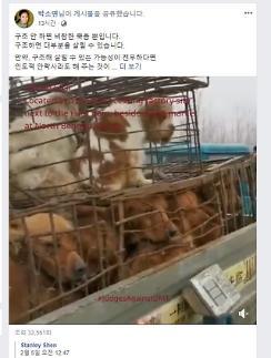 [포토] 케어 박소연 대표, 인도적 안락사는 동물에게 이익