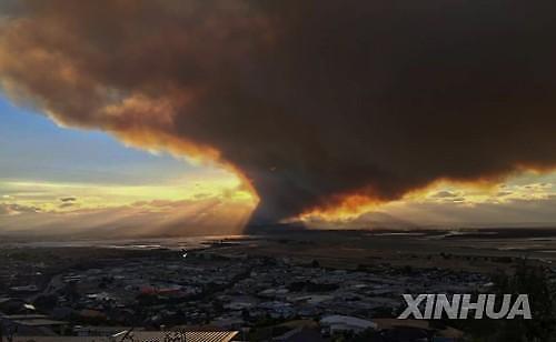 뉴질랜드 산불 비상사태...강풍 예보에 진화 난항