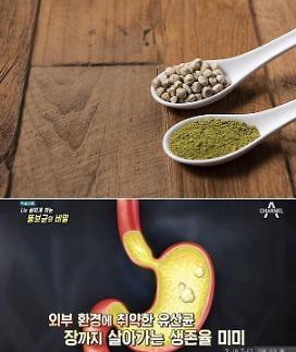 슈퍼푸드 모링가·다이어트 효과 프롤린 유산균 섭취 시 주의할 점은?