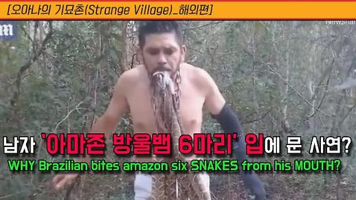 [오아나의 기묘촌(Strange Village)_해외편] 아마존 방울뱀 6마리 입에 문 안타까운 사연?