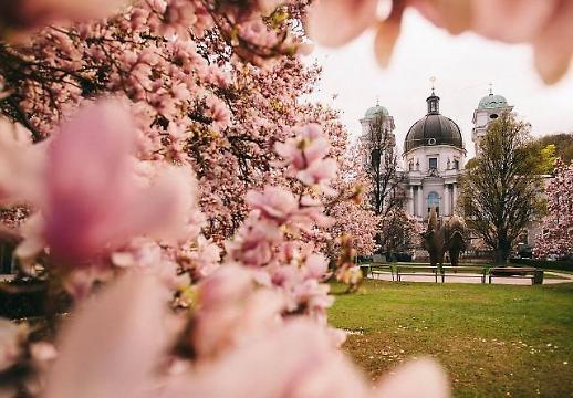 전국 미세먼지 농도 나쁨…청정 잘츠부르크 봄꽃 투어 관심