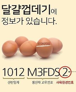 [팩트체크] 계란 산란일자 표시, 한국만 의무시행 왜?