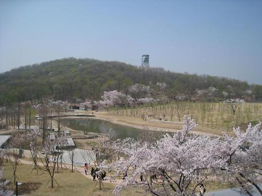 찾았다! 축제보다 아름다운 서울 벚꽃 명소..북서울꿈의숲, 서울어린이대공원, 안산 등