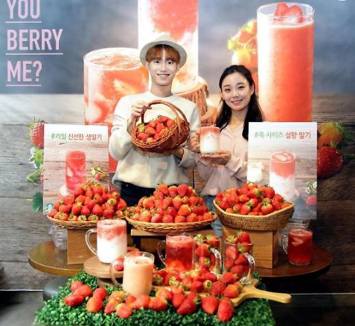 스타벅스, 봄 딸기 음료 '2주간 한정판매'