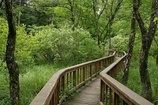 올 식목일엔 국립수목원에서 힐링하고 다양한 산림생물 감상하자!