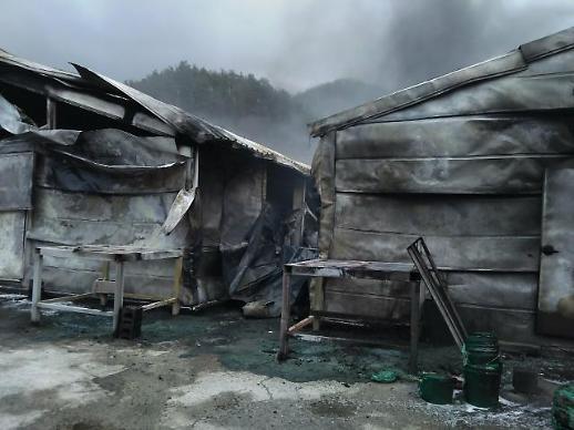 진안 양계장서 불, 병아리 7만1천여 마리 죽어..양계장 건물 4157㎡ 전소