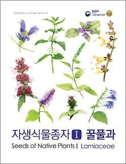 우리나라 꿀풀과 69종 씨앗 정보를 한눈에